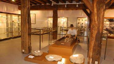 Musée municipal de Préhistoire et d'Histoire