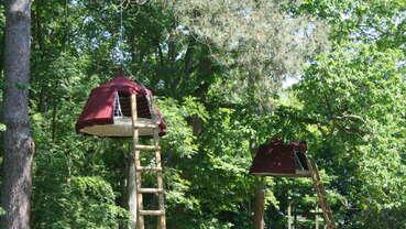 Woody Park - Parc de loisirs